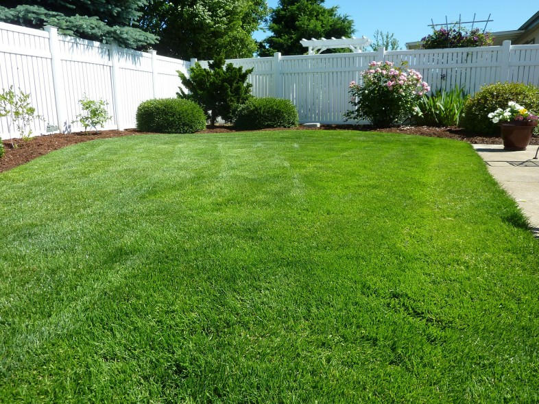 While keeping your lawn looking good, keep yourself safe!